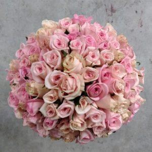 100 pink roses top