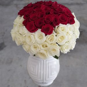 100 red and white roses front