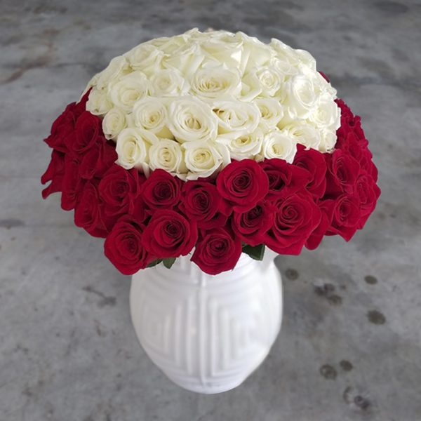 100 white and red roses front