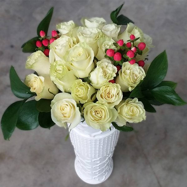two dozen white roses front